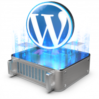 Wordpress multisite VPS OVHcloud
